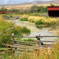Grants Khors Ranch Vertical by Marty Koch