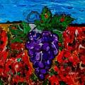 Grape Jazz by Neal Barbosa