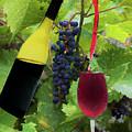 Grape Refill by Dan Friend