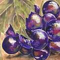 Grapes by Colette Acra