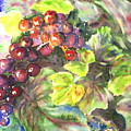 Grapes by Corynne Hilbert