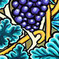 Grapes by Genevieve Esson