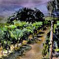 Grapes Of Niagara by Mary Sonya  Conti