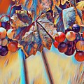 Grapevine Art by Selena Wagner