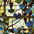Grapevine by Louis Comfort Tiffany