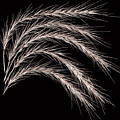 Grass Curve Coppertone by Joseph Miko