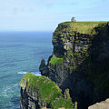 Grass Growing Along The Cliff's Of Moher In Ireland by DejaVu Designs