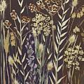 Grasses by Sarah Gillard
