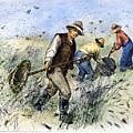 Grasshopper Plague, 1888 by Granger