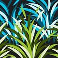 Grasslands by Brandy Hull