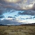 Grasslands Near Portal by Bob Gibbons