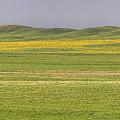 Grasslands Panorama by Jim Garrison