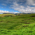 Grassy Meadow South Iceland by Mike Deutsch