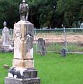 Graveyard by Amy Hosp
