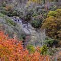 Graveyard Fields Lower Falls by Allen Nice-Webb