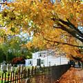 Graveyard In Autumn by Susan Savad