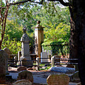 Graveyard In Charleston by Susanne Van Hulst