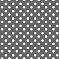 Gray And White Polka Dots by Bimbys Collections