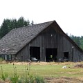 Gray Barn     Washington State by Laurie Kidd
