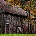 Gray Weathered Barns Number Three by Jeff Folger