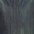 Gray Wolf Eyes by Darlene Green