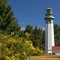 Grays Harbor Lighthouse H by Inge Riis McDonald