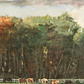 Grazing Horses by Robert Tutsky