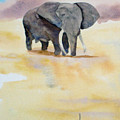 Great African Elephant  by Vicki  Housel