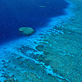 Great Barrier Reef by Bill Schildge - Printscapes