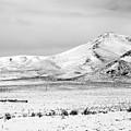 Great Basin by Alasdair Turner