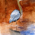 Great Blue Heron by Brett Winn