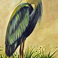 Great Blue Heron by Carolyn Shireman