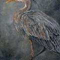 Great Blue Heron by Edmund Price