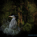 Great Blue Heron On The River by Barbara Hebert
