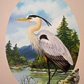 Flying Lamb Productions                 Great Blue Heron by Sigrid Tune