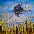 Great Blue Heron by Terry Honstead
