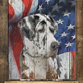 Great Dane Flag Poster by Tim Wemple