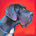 Great Dane Painting by Svetlana Novikova