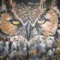 Great Hornet Owl by Sandra Peyrolle