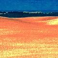 Great Lakes Dunes B by Scott L Holtslander