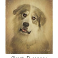 Great Pyrenees Poster by Tim Wemple