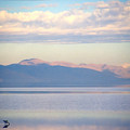 Great Salt Lake Pastel Morning by Steve Ohlsen