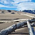 Great Sand Dunes National Park Driftwood Landscape by Kyle Hanson