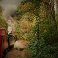 Great Smokey Mountain Railroad by Vice Photo