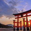 Great Torii Of Miyajima At Sunset by Delphimages Photo Creations