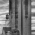 Great Western Sugar Mill Longmont Colorado Bw by James BO  Insogna
