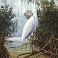 Great White Heron by Kevin Brant
