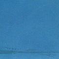 Grebes by Denny Bond