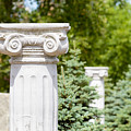 Greek Ionic Columns by Alain De Maximy