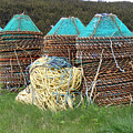 Green - Crab Pots by Barbara Griffin
